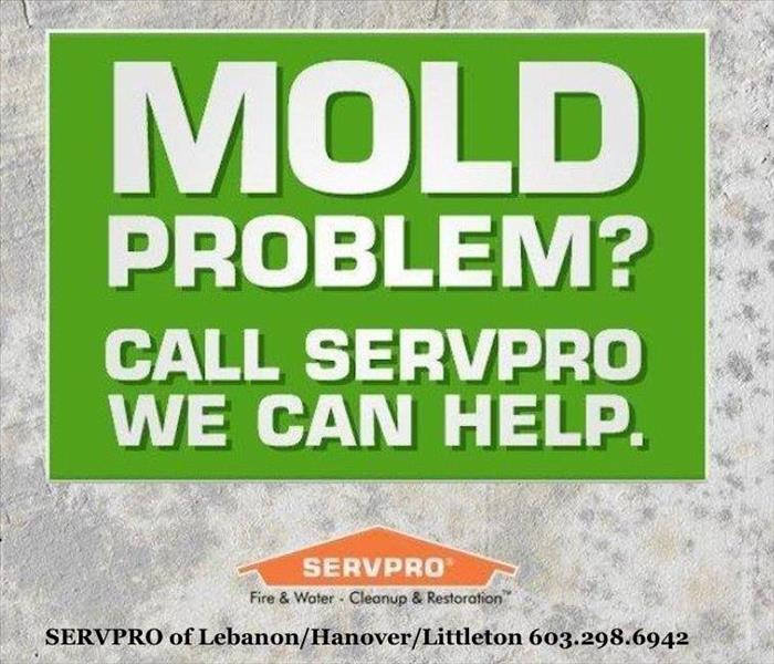 MOLD PROBLEMS? After