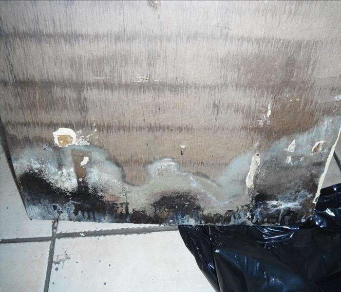 WHITE RIVER JUNCTION - MOLD LOSS