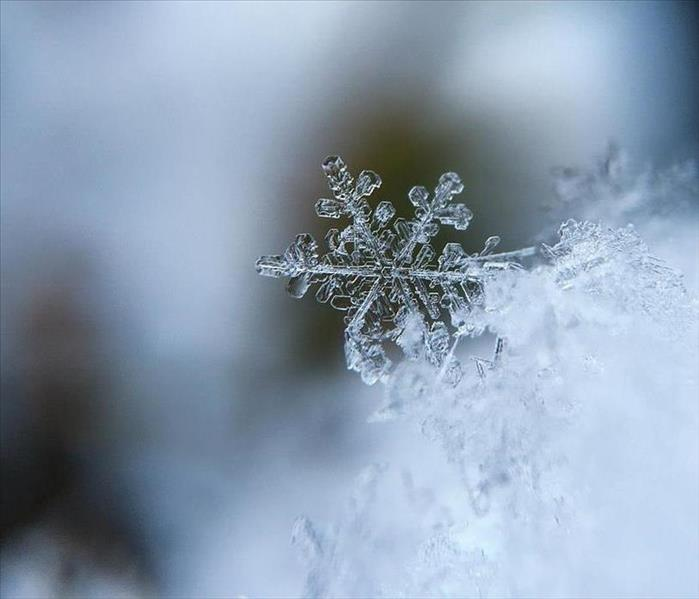 picture of enlarged snowflake